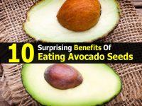 10 Surprising Benefits Of Eating Avocado Seeds
