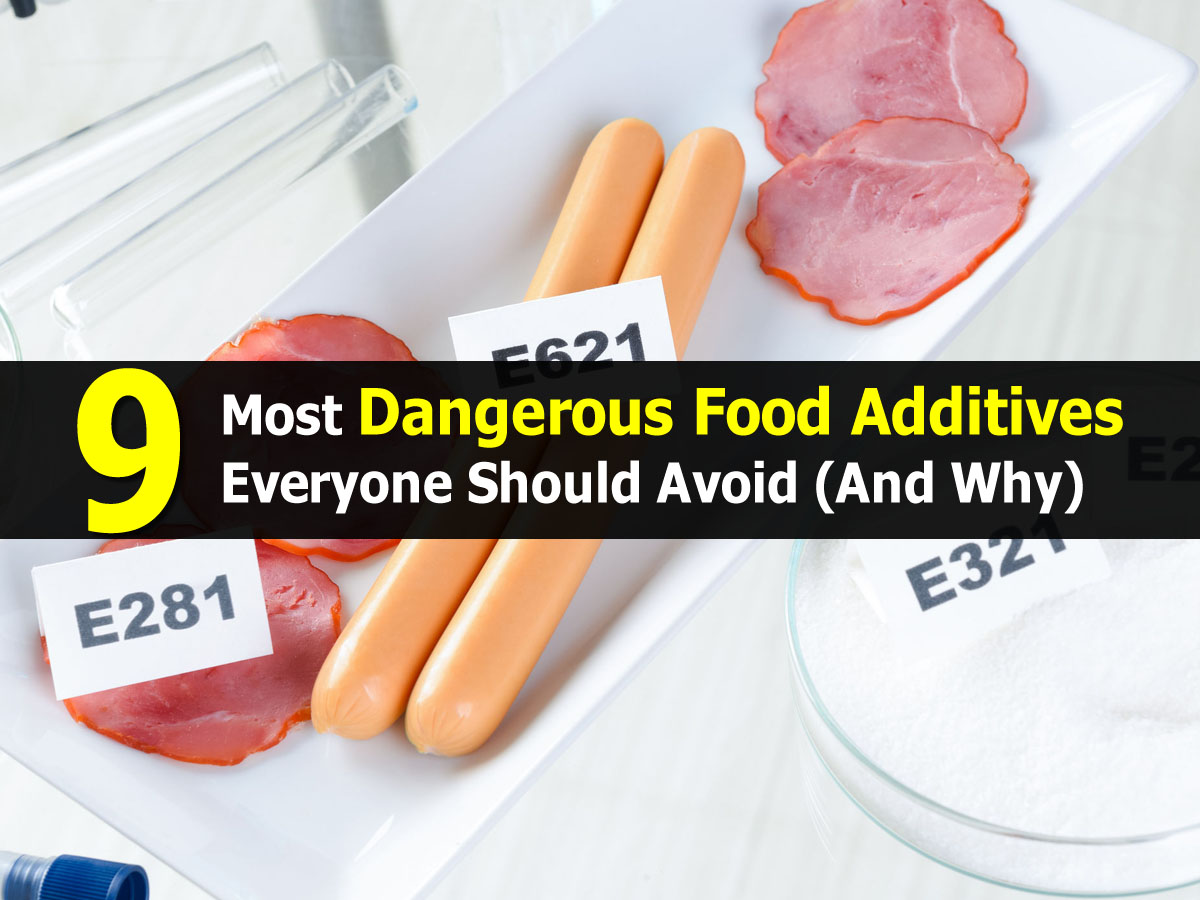 dangers of food additives essay