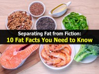 Separating Fat from Fiction: 10 Fat Facts You Need to Know
