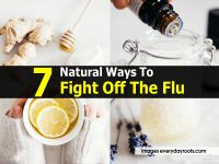 7 Natural Ways To Fight Off The Flu