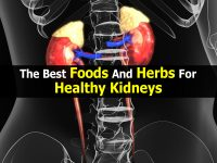 The Best Foods And Herbs For Healthy Kidneys
