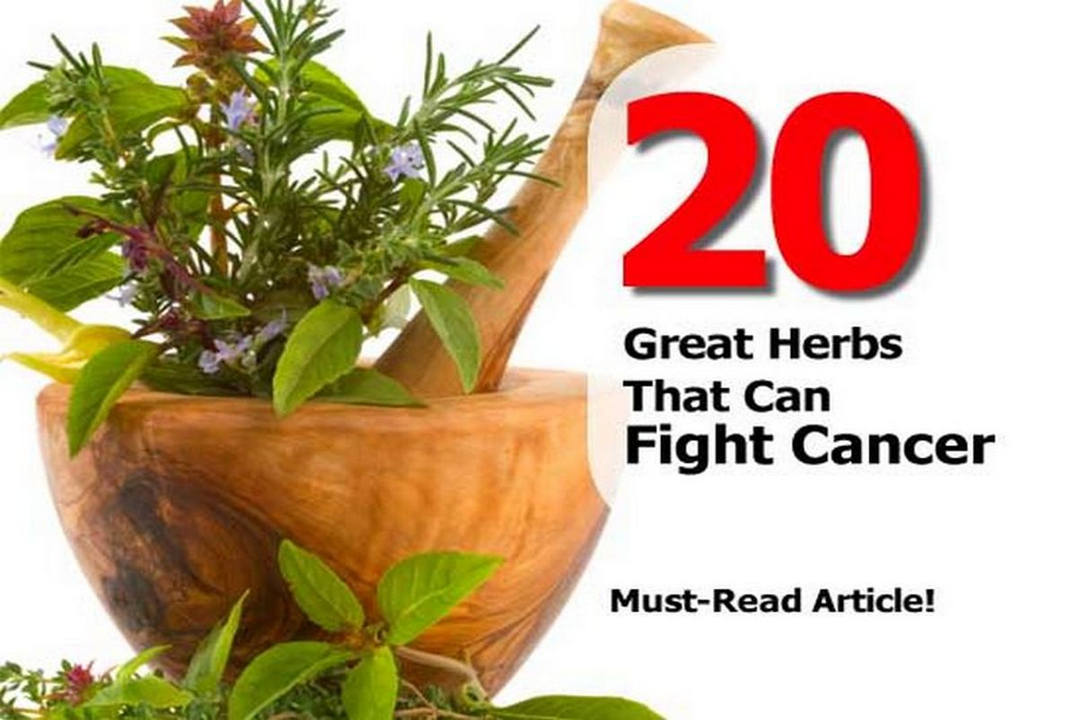 great-herbs-that-can-fight-cancer