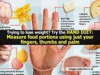 hand-diet-dailymail-co-uk