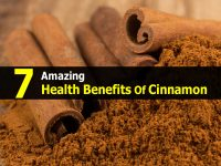7 Amazing Health Benefits Of Cinnamon