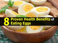 8 Proven Health Benefits of Eating Eggs