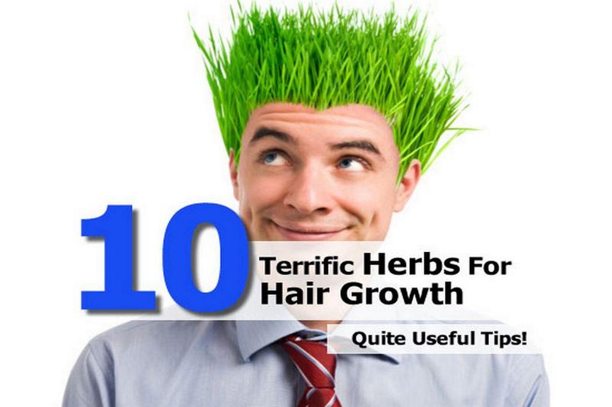 Herbs hair growth