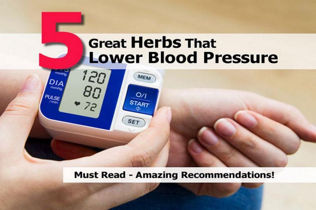 herbs-lower-blood-pressure