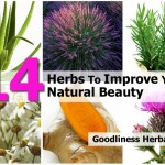 herbs-to-improve-natural-beauty