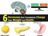 6 Hormones that Completely Change Your Weight and Health