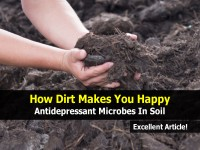 how-dirt-makes-happy