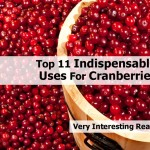 indispensable-uses-for-cranberries