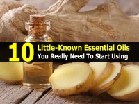 10 Little-Known Essential Oils You Really Need To Start Using
