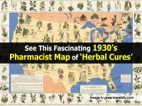See This Fascinating 1930's Pharmacist Map of 'Herbal Cures'