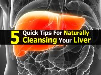 5 Quick Tips For Naturally Cleansing Your Liver