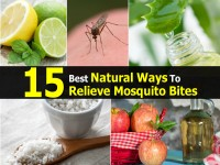 ways-to-relieve-mosquito-bites